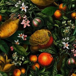 """8"""" Vintage Citrus Fruit Pattern"""