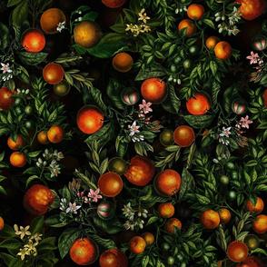 """21"""" Vintage Oranges Fruit Pattern"""