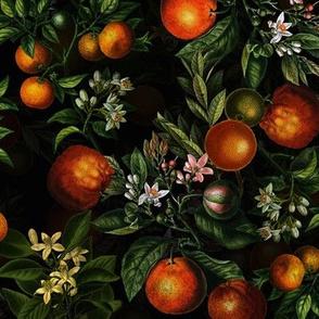"""14"""" Vintage Oranges Fruit Pattern"""