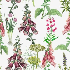 "7"" Pink Purple Vintage Hand drawn Garden Herbs and Flowers"