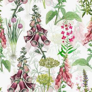 """12"""" Pink Purple Vintage Hand drawnGarden Herbs and Flowers"""