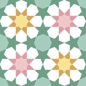 09621062 : U85E2 : springcolors