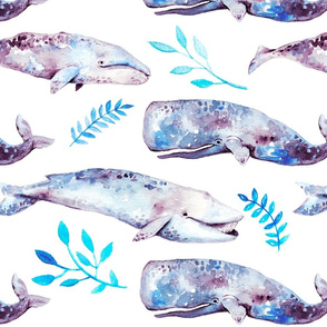Watercolour Whales On White With Leaves