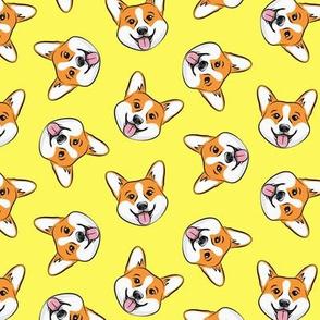 Corgi - cute dogs - Pembroke Welsh Corgi - yellow - LAD20