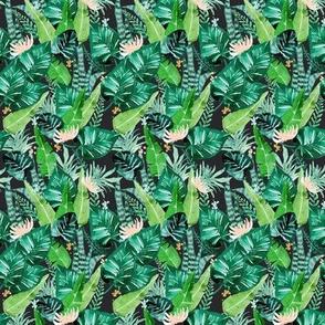 jungle tropical dark S