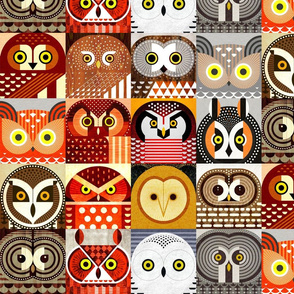 North American Owls - Small