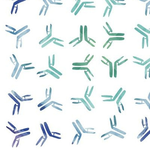 Rainbow Antibodies