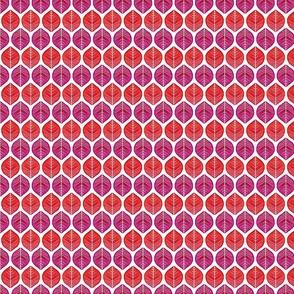 misanthrope in valentine colors