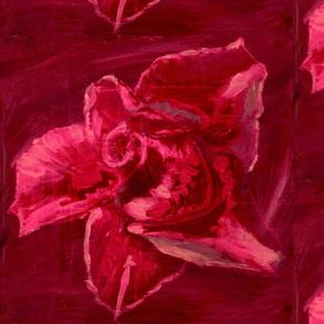 Red Rose JUMBO ©Claudette MacLean