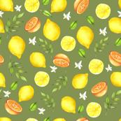 citroenenbcsp