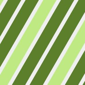 St-Patrick's Day - Diagonal Striped 11