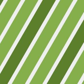 St-Patrick's Day - Diagonal Striped 12