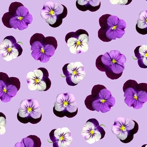 pressed flowers fabric - pansy fabric, viola fabric, purple floral fabric, pansies, violets, florals - lavender