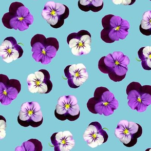 pressed flowers fabric - pansy fabric, viola fabric, purple floral fabric, pansies, violets, florals - blue