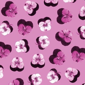 pressed flowers fabric - pansy fabric, viola fabric, purple floral fabric, pansies, violets, florals - mauve