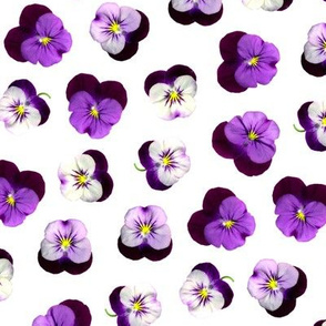 pressed flowers fabric - pansy fabric, viola fabric, purple floral fabric, pansies, violets, florals - white