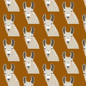 llama - ochre