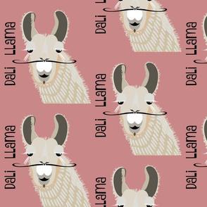 Dali Llama - rose