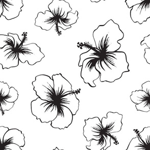Hibiscus - White and Black