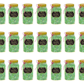 Canned Jarred nopalitos noenfrascados Cactus