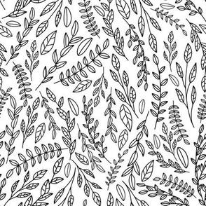 Botanical Line Leaves Black And White