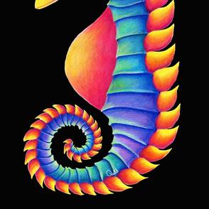 Seahorse Black Bacground