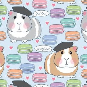 french guinea pigs and macarons on soft blue