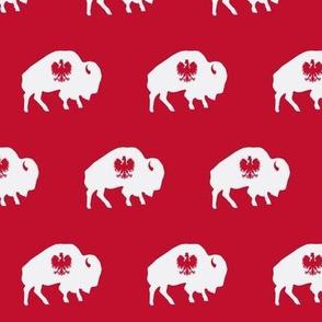 Buffalo Polish 2