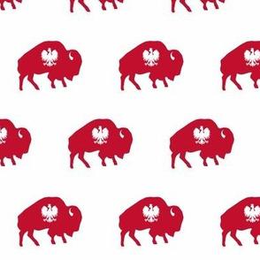 Buffalo Polish