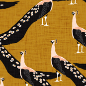 peacock oh so regal - gold linen texture