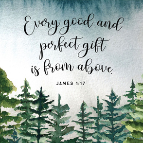 """36""""x42"""": every good and perfect gift is from above // john 1:17"""