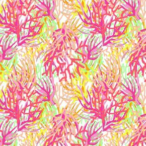 coral2 white