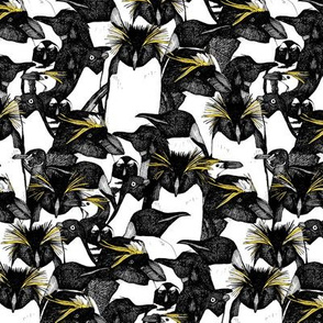 just penguins black white yellow half size