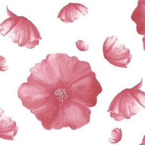 Dusty Poppy|Soft Pink Blooms|Renee Davis