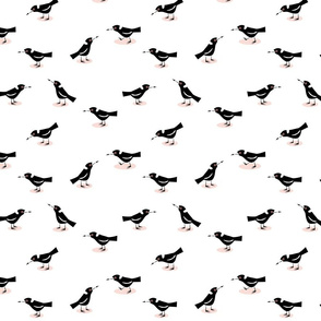 cheeky magpies white small