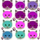 CATs diagonal pinks,, purples, blues
