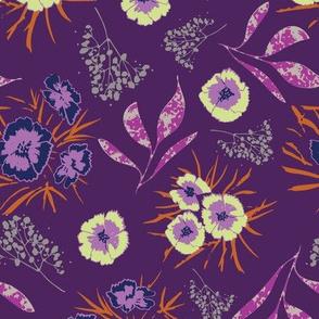 sweet william on purple