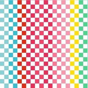 "6"" Rainbow Checkered Pattern"