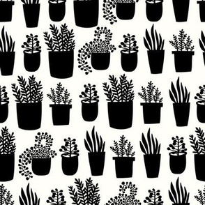 Houseplants - white and black - small scale