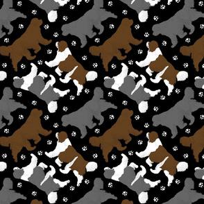 Trotting multicolor Newfoundlands and paw prints - black
