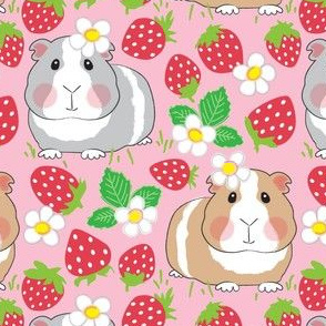 guinea pigs with red strawberries