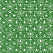 Shining Star* (Dollar Bill) || stars geometric superstar disco 70s 80s pop art green