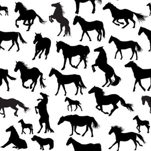 Horses Black on White