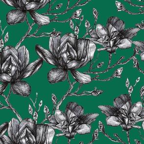 Graphic Magnolia
