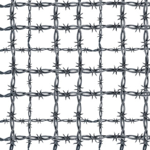 Barbed Wire Plaid on White