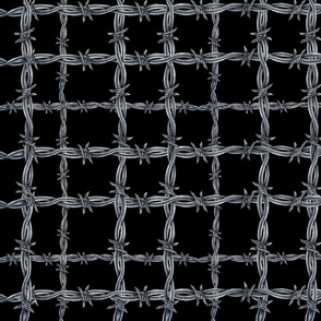 Barbed Wire Plaid