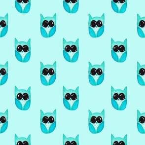 Baby blue owl on light blue