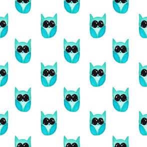 Baby blue owls