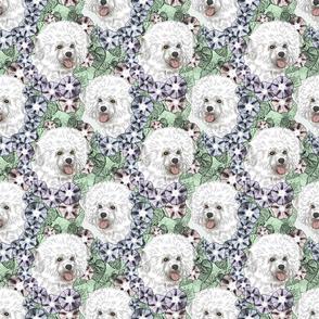 Floral Bichon Frise portraits