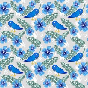 Blue birds in garden